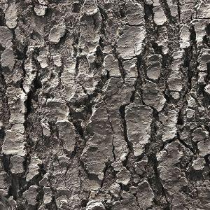 acrylicone-wzor-4dd-kora